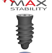 Max-Stability